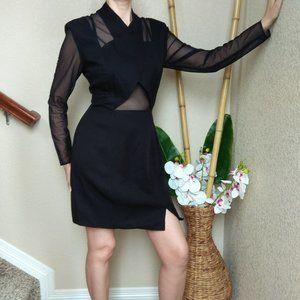 Vintage Bodycon Sheer Cutout Long Sleeve Dress
